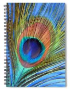 Peacock Glory Spiral Notebook