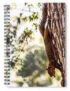 Peanut Run Spiral Notebook