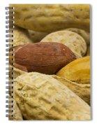 Peanuts 6 Spiral Notebook