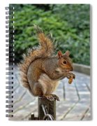 Peanuts For Lunch Spiral Notebook