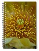 Pear Cactus Close Up Spiral Notebook
