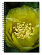 Pear Cactus Flower Spiral Notebook
