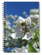 Pear In Bloom Spiral Notebook