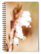 Pearls In The Wind Spiral Notebook