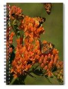 Pearly Crescentpot Butterflies Landing On Butterfly Milkweed Spiral Notebook