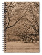 Pecan Orchard Spiral Notebook