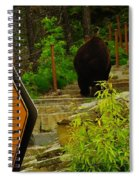 Pedestrian Crossing My Big Bear Booty Spiral Notebook