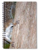 Peek A Boo Spiral Notebook