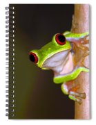 Peepers Spiral Notebook