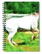 Pegasus Impression Spiral Notebook