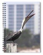 Pelican Attitude Spiral Notebook