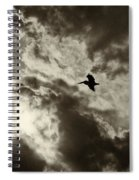Pelican Fly By Spiral Notebook