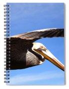 Pelican In Flight Spiral Notebook