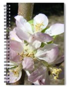 Pending Fruit Spiral Notebook