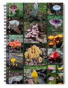 Pennsylvania Mushrooms Collage 2 Spiral Notebook