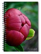 Peony Bud Spiral Notebook