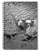 People Camped Out For Apollo 11 Launch Spiral Notebook