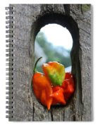 Peppered Fence Spiral Notebook