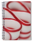 Peppermint Christmas Ribbons Spiral Notebook