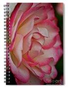 Peppermint Rose Spiral Notebook