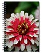 Peppermint Zinnia Spiral Notebook