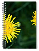 Perennial Sow-thistle Spiral Notebook