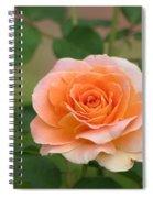 Perfect Peach Petals Spiral Notebook