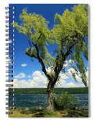 Perfect Picnic Spot Spiral Notebook