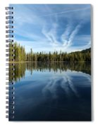 Perfect Reflection Spiral Notebook