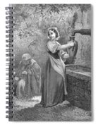 Perrault: The Fairies Spiral Notebook