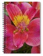 Peruvian Lilies Spiral Notebook