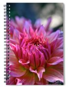 Petal Motion Spiral Notebook