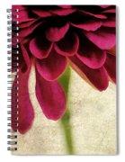 Petales De Fleurs Spiral Notebook