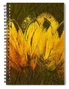 Petales De Soleil - A43t02b Spiral Notebook