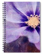 Petaline - 06bt04b Spiral Notebook