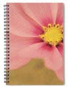Petaline - P05a Spiral Notebook