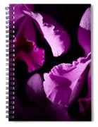 Petals Galore Spiral Notebook