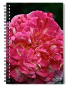 Petals Petals And More Petals Spiral Notebook