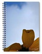 Petals Rising Spiral Notebook