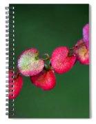 Petites Feuilles Spiral Notebook