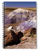 Petrified Logs In The Badlands Spiral Notebook