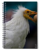 Pharaos Chicken  Spiral Notebook