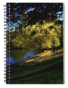 Phoenix Park, Dublin, Co Dublin, Ireland Spiral Notebook