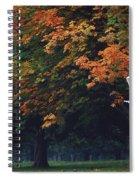 Phoenix Park, Dublin, Co Dublin Spiral Notebook