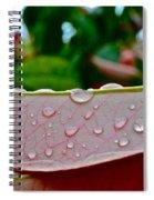 Photinia Veins Spiral Notebook