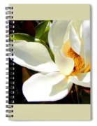Photo For Sydneys Magnolia Painting Spiral Notebook