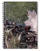 Photo Watercolour Leaf Against Rock Spiral Notebook
