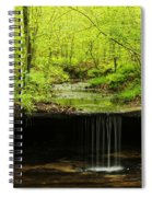 Pickle Spring In Missouri Spiral Notebook