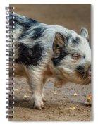Pig With An Attitude Spiral Notebook
