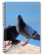 Pigeon Spiral Notebook